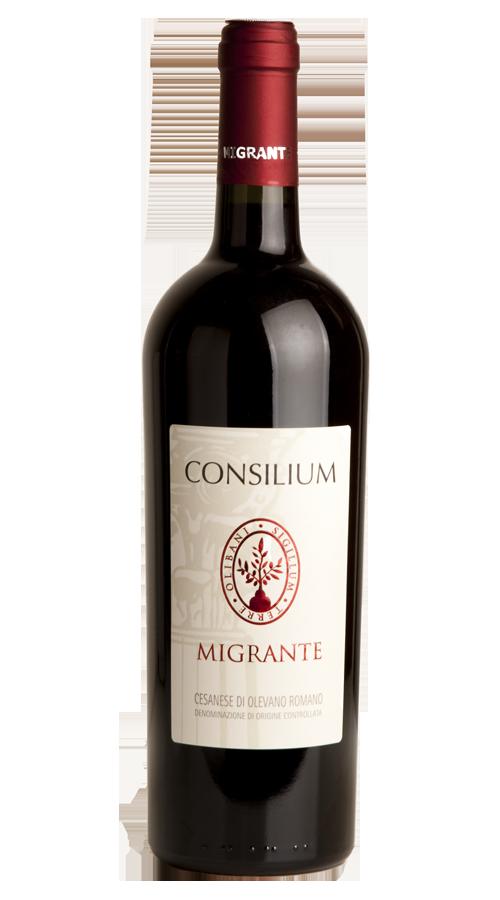 Consilium - Azienda Agricola Migrante - Cesanese di Olevano Romano